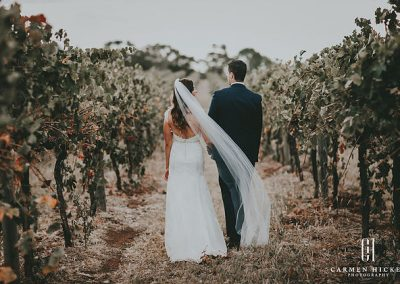 Matt Sarah Forever in Love vineyard photo shoot at Cottontails Winery